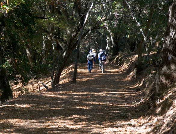 Hiking Trails The Villages Golf And Country Club